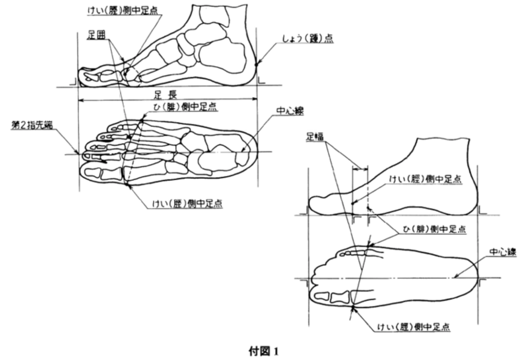 靴のJIS規格の画像