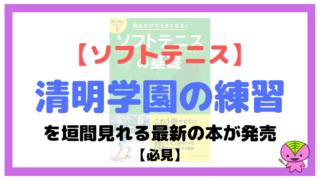 【ソフトテニス】清明学園の練習を垣間見れる最新の本が発売されたよ【必見】