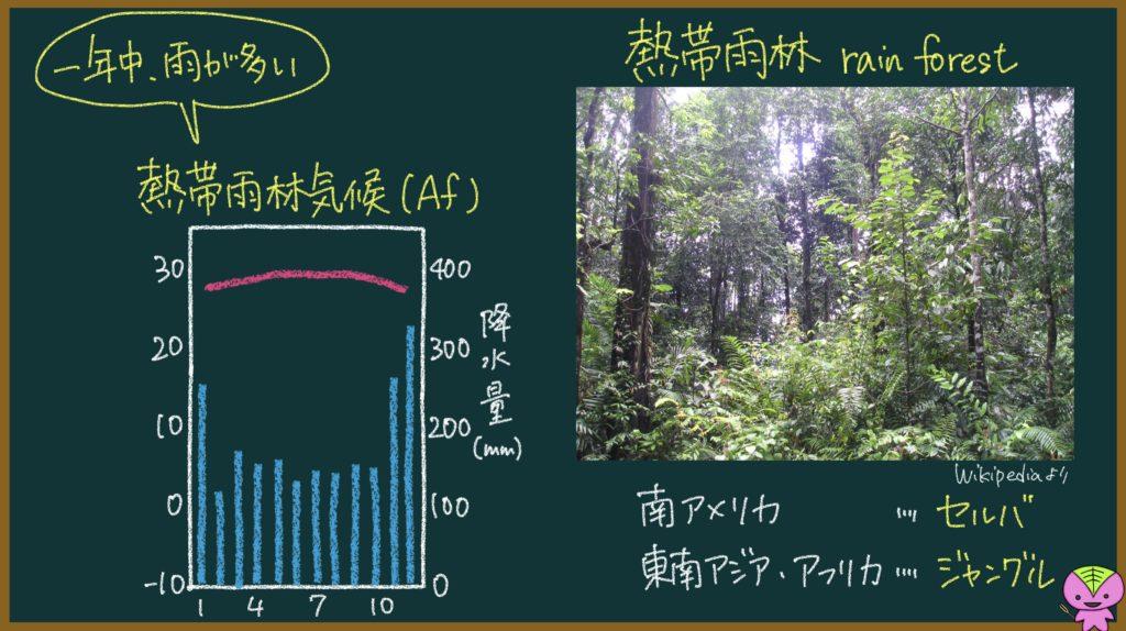 熱帯雨林気候の説明画像