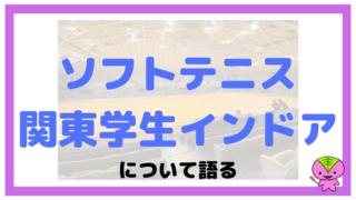 関東学生選抜ソフトテニスインドア大会について語るブログ記事【2019】