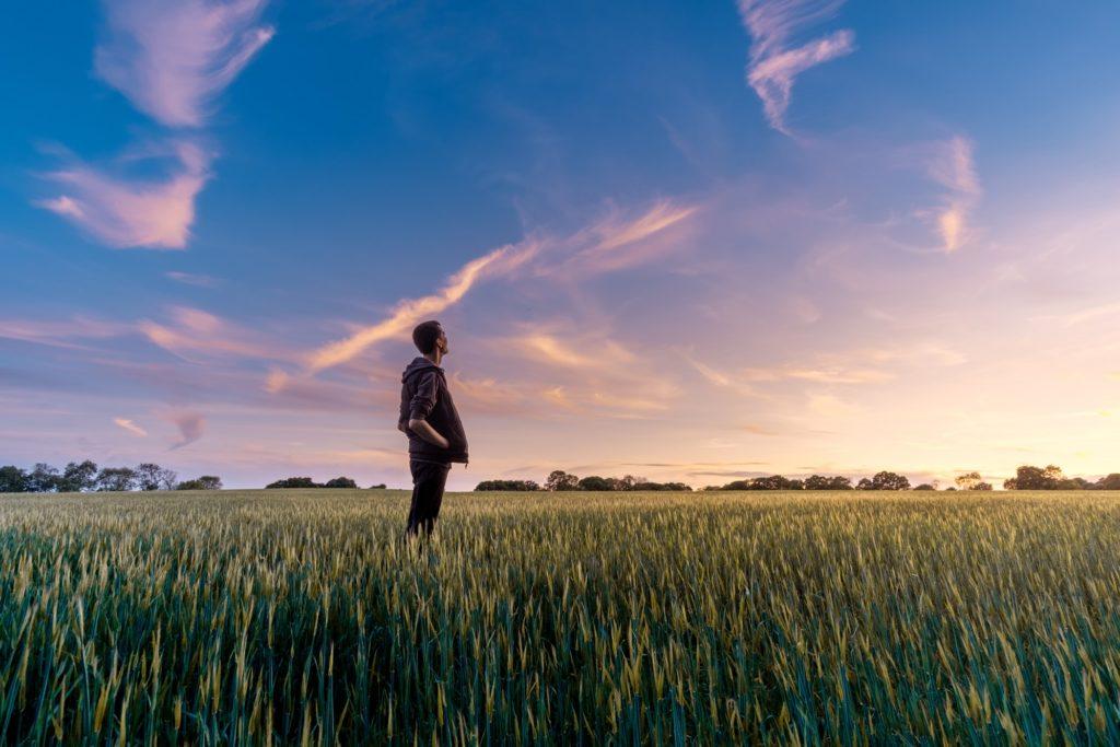 空を見上げる男性の画像